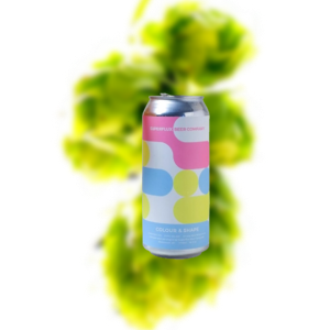 Superflux Colour & Shape IPA (Can)