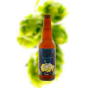 Taiwan Head Muwangshi Orange Sour Ale