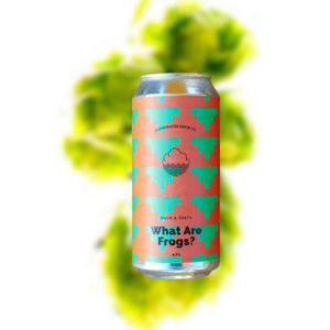Cloudwater What Are Frogs? Sour Gose (Can)